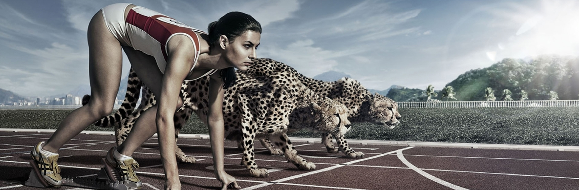 cheetah_athlete